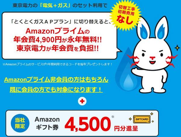 東京電力キャンペーン